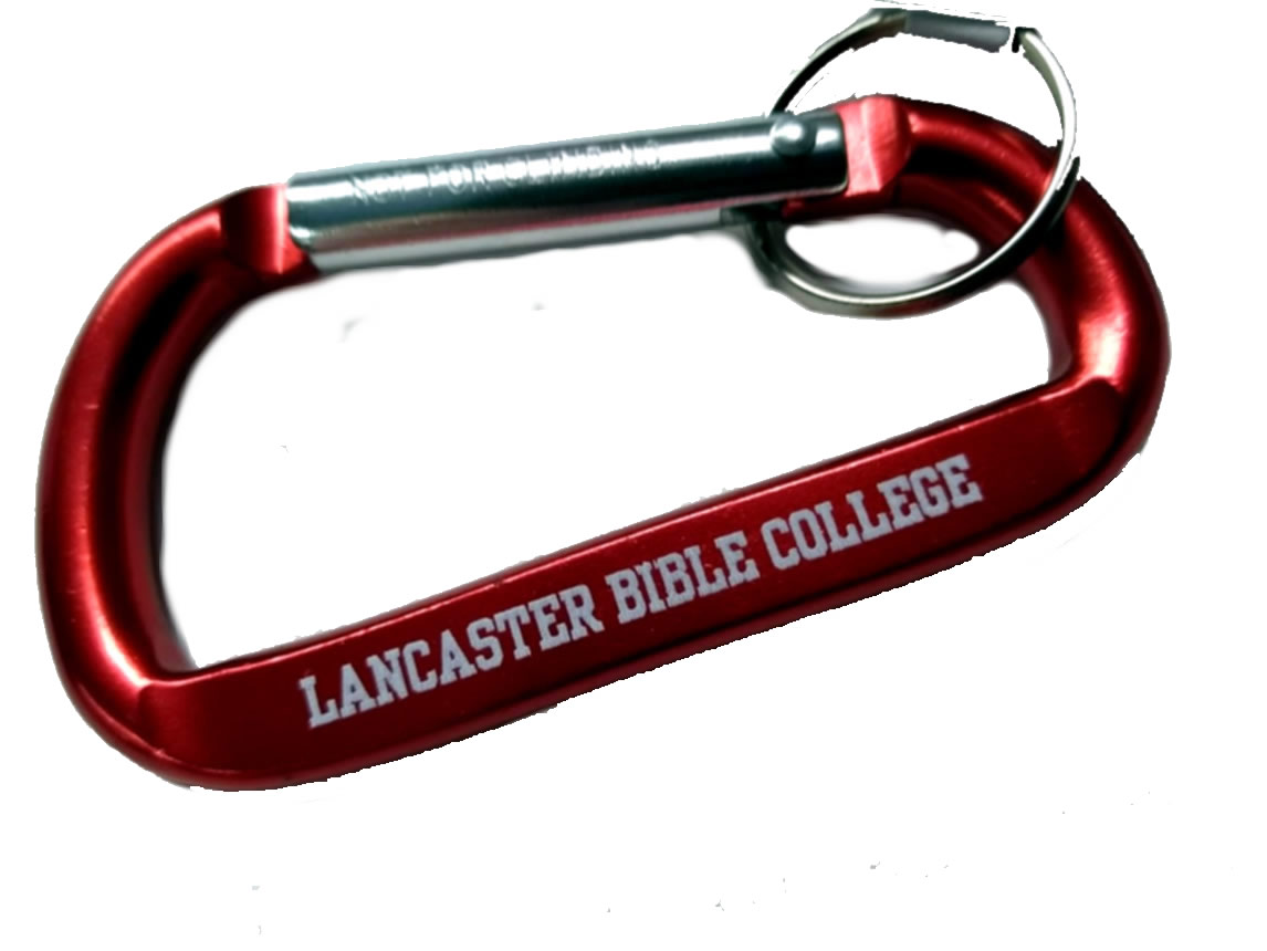 Cover Image For CARABINER KEY RED